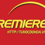 ToolBox trong Adobe Premiere – Tìm hiểu bộ công cụ trong Premiere.