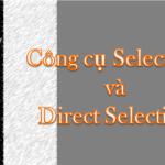 Illustrator – Hướng dẫn sử dụng công cụ Selection và Direct Selection