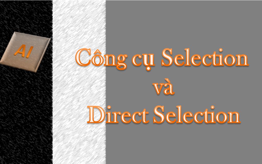 Illustrator - Hướng dẫn sử dụng công cụ Selection và Direct Selection