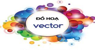 Đồ hoạ vector là gì