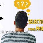 Selection Tool trong illustrator – Hướng dẫn sử dụng Selection Tool.