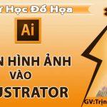 Chèn ảnh vào illustrator – Cách thêm và quản lý hình ảnh trong Illustrator