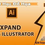 Expand trong Illustrator – Ứng dụng của Expand trong Illustrator