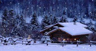 hiệu ứng tuyết