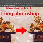 Nhân đôi hình ảnh trong photoshop – Cách nhân bản đối tượng đơn giản