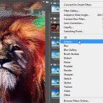 Nhóm bộ lọc Artistic – Sử dụng bộ lọc Artistic trong photoshop