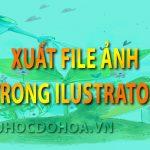 Xuất file ảnh trong Illustrator – Lưu định dạng JPG, PNG, JPEG trong AI