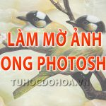 Làm mờ ảnh trong photoshop – 4 Cách làm mờ nền ảnh trong Ps