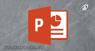 Hiệu ứng chuyển động trong PowerPoint