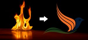 Phần logo cánh chim màu cam của logo Tự Học Đồ hoạ