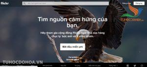 flickr - Cung cấp kho ảnh khổng lồ và miễn phí