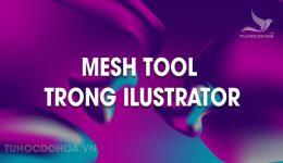 Mesh tool trong Illustrator - Cách sử dụng Mesh trong AI