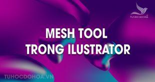 Mesh tool trong Illustrator
