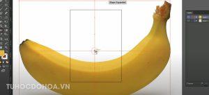 Tạo hệ thống lưới mesh trong illustrator