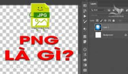 PNG là gì? Đuôi ảnh PNG và những điều bạn cần biết về PNG