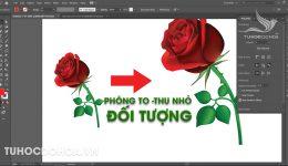 Phóng to thu nhỏ đối tượng - Cách Zoom hình trong Illustrator