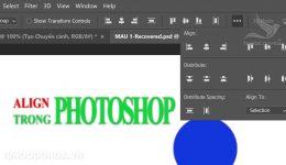 Align trong Photoshop - Cách căn chỉnh trong photoshop