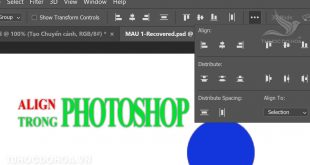 Align trong Photoshop