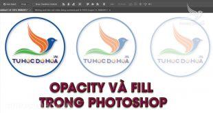 Opacity và Fill trong Photoshop