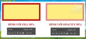 Tổng quan về Opacity và Fill trong photoshop